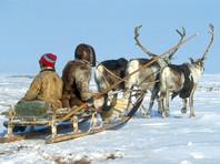 Банда из детей оленеводов и местных жителей держит в страхе поселок Гыда на Ямале, МВД обещает разобраться