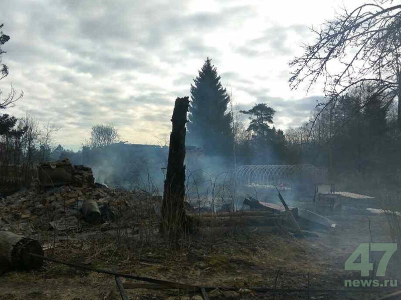 5 апреля 2017 года около 9:30 в деревне Лопец произошел пожар, в результате которого выгорело девять дачных домов и четыре хозяйственные постройки