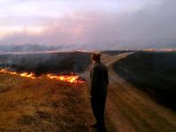 В Забайкалье пожары усилились в 3 раза, а в Иркутской области от пала травы  сгорело более 50 домов