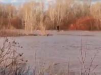 Под Оренбургом двое бузулучан отправились в путешествие на бревне после попытки  сделать на нем селфи (ВИДЕО)
