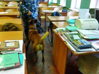 Детский омбудсмен Петербурга не увидела нарушений в антинаркотическом рейде в лицее Сестрорецка