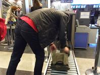В аэропорту Внуково задержали таджика с банкой пороха
