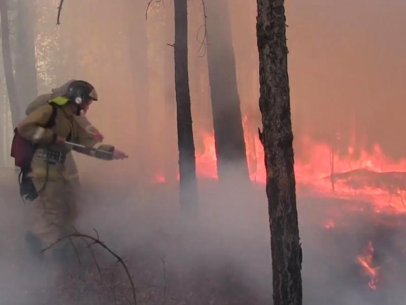 Администрация Иркутской области отчиталась о пожарах на площади в 7000 га