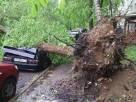 Ураган в Москве: более 10 погибших, до 70 пострадавших. С рабочей резиденции Путина в Кремле сорвало крышу