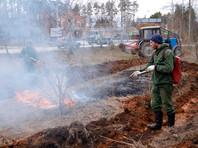 В 51 регионе России запретили разводить костры и выезжать в леса