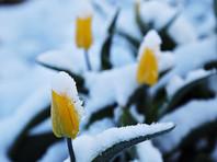 Под Оренбургом 29 мая выпал снег (ФОТО, ВИДЕО)