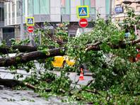Опубликован список погибших в результате урагана в Москве