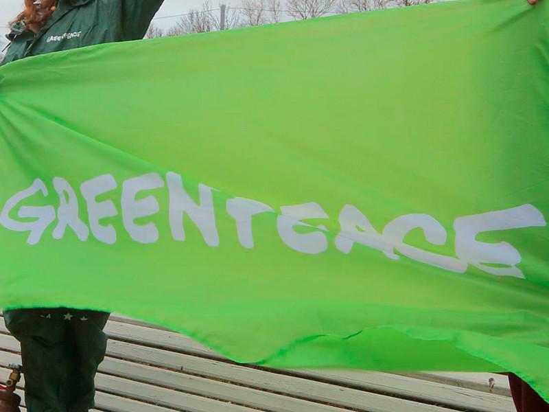 В МВД не нашли напавших на лагерь Greenpeace