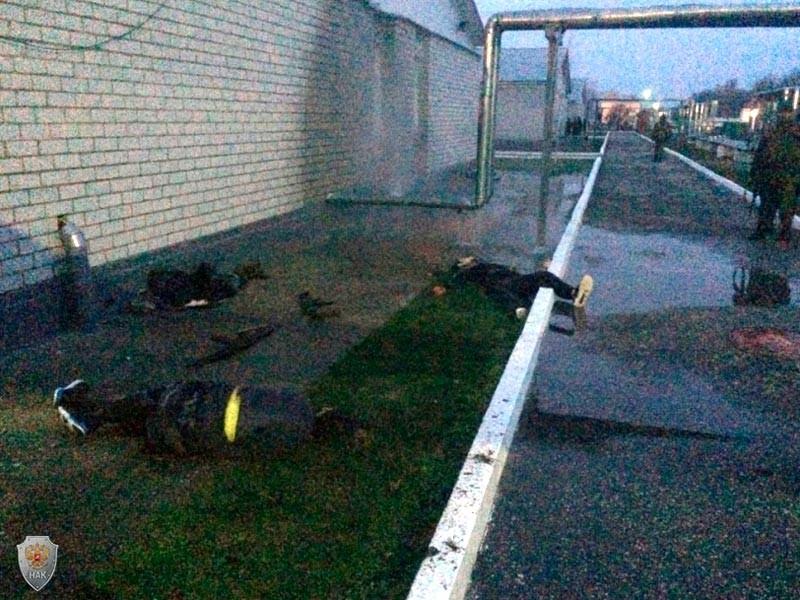 24 марта после нападения на объект воинской части Росгвардии, дислоцирующейся в районе станицы Наурская Чеченской Республики, были ликвидированы 6 боевиков