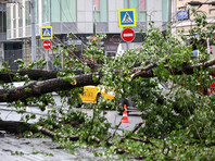 Число погибших от сильнейшего урагана в столичном регионе достигло 16 человек