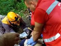 Альпинист сорвался с Орлиных скал в Сочи и погиб