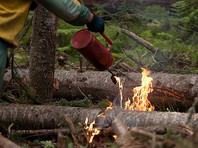 МЧС: все пожары в Красноярском крае потушены