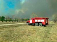 Площадь лесных пожаров в Сибири за сутки выросла до 1,7 тысячи гектаров