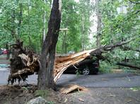 В Москве скончался еще один пострадавший от урагана 29 мая