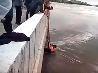 В Омске подросток помог спасти двух маленьких сестер, упавших в половодный Иртыш (ВИДЕО)