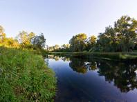 Экологи назвали самые чистые регионы России: Москва в десятке, а Подмосковье - в хвосте