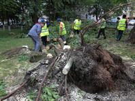 Житель Свердловской области погиб из-за урагана