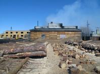 На канской лесопилке, из-за пожара на которой погибли два человека,  подделывали документы об успешной проверке