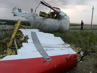 """Волонтеры сообщили о задержании """"одного из ключевых свидетелей"""" по делу о крушении Boeing"""
