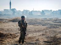 """""""Яблоко"""" узнало примерную стоимость военной операции России в Сирии"""