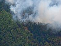 Площадь лесных пожаров в Сибири за сутки выросла в семь раз, зато уменьшилась на Дальнем Востоке