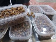 Китаец попытался контрабандой переправить через границу в Приморье жир тысяч лягушек
