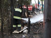 В Волгограде вычислили предполагаемых поджигателей травы - двух подростков