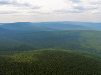 На севере Иркутской области снег потушил все природные пожары