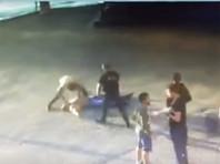 СК опроверг информацию о задержании подозреваемого в убийстве пауэрлифтера Драчева