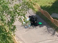 В Сургуте после резни в ходе спецоперации задержали мужчину