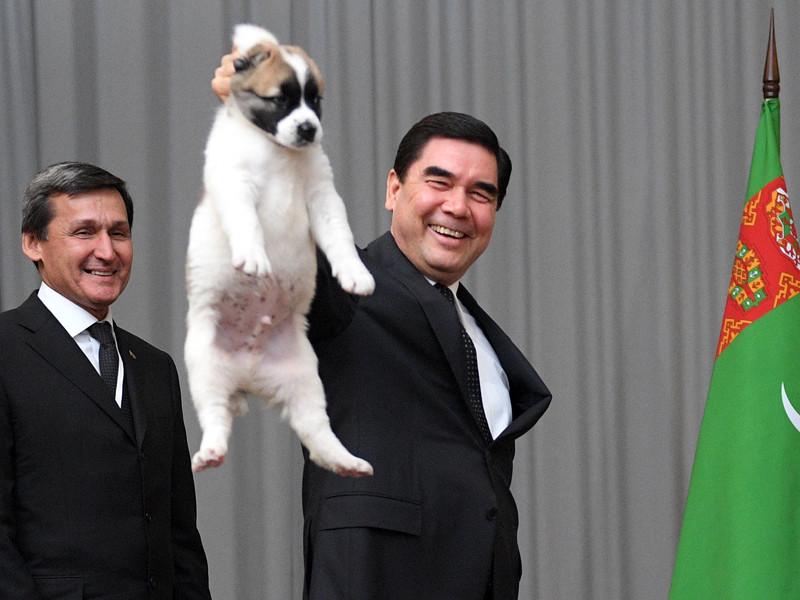 Президент России Владимир Путин провел 11 октября в Сочи встречу с коллегой из Туркмении Гурбангулы Бердымухамедовым, во время которой тот вручил ему в подарок щенка