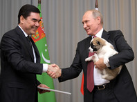 Глава Туркмении поднял щенка за загривок, пояснив, что таким образом оценивают характер собаки. Щенок показал себя в этот момент с лучшей стороны. Это значит, что он вырастет смелым, бесстрашным и выдержанным