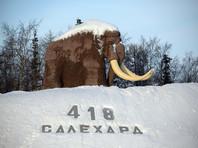Покупку унитаза за 8 млн власти Ямала объяснили необходимостью принимать высоких гостей