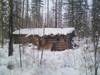 В Сибири охотник заплатит штраф за то, что медведь украл у него два ружья
