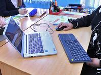 Детский омбудсмен попросит смягчить наказание взломавшему электронный дневник бывшему школьнику из Новосибирска