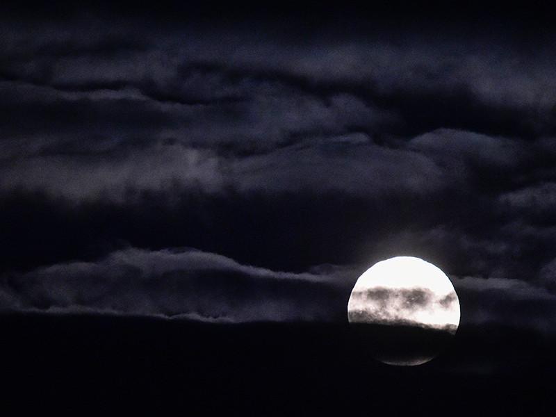 В ночь с 3 на 4 декабря в небе можно будет наблюдать так называемое суперлуние: спутник Земли подойдет к нашей планете максимально близко и будет выглядеть больше обычного