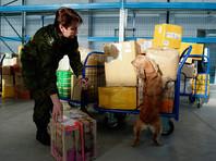 На границе РФ скопились тысячи посылок из интернет-магазинов: от получателей требуют ИНН и ссылку на описание товара