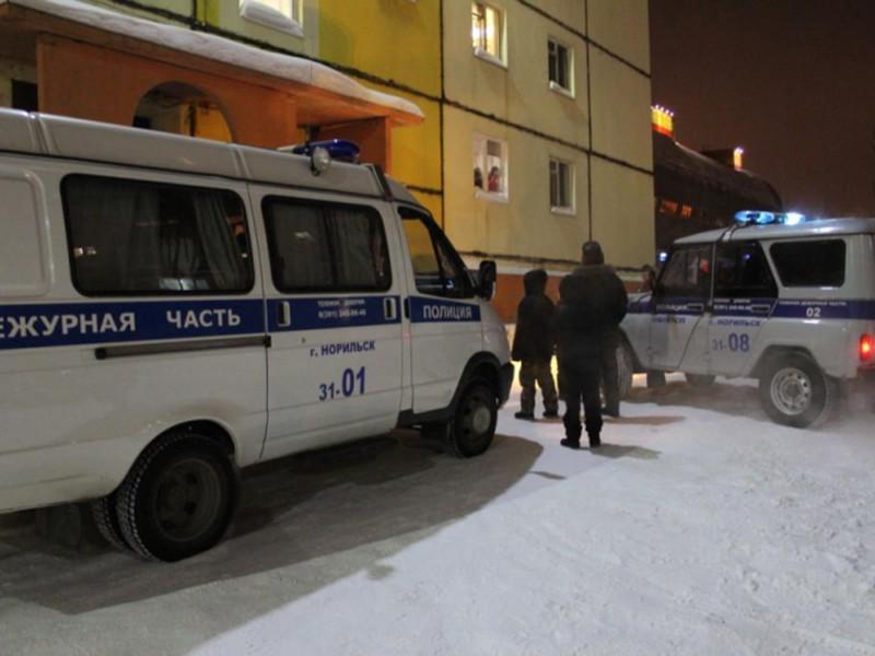 В Норильске бойцы Росгвардии и полицейские убили волка в подвале жилого дома
