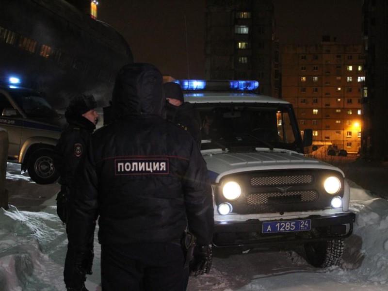 12 декабря в Норильске бойцы Росгвардии и полицейские убили волка в подвале жилого дома