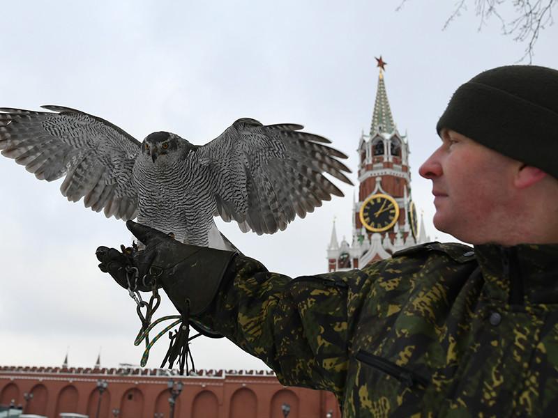 Источник поведал о способности кремлевских ястребов перехватывать беспилотники