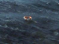 По данным МСКЦ, на месте поисков нашли два спасжилета, два спасательных круга, рыболовецкий буй, бытовой мусор и швартовую бухту. В субботу, 27 января, были найдены два плота, людей на них не оказалось