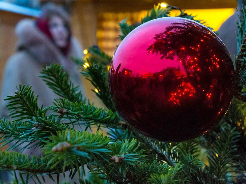 Жители города Соснового Бора Ленинградской области начали возвращать шары, похищенные с городских новогодних елок. Пока вернули только два шара из 121