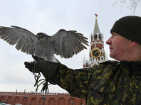 Источник рассказал о способности кремлевских ястребов перехватывать беспилотники