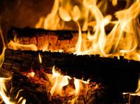 В Рязанской области от отравления угарным газом погибли женщина и двое малолетних детей