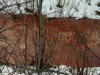 Тюменские власти выясняют, почему река Молчанка стала красной (ФОТО)