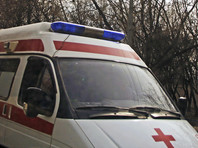 В Новосибирске автомобиль во время салюта наехал на пешеходов: погибли женщина и ребенок