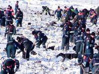 МЧС: На месте крушения Ан-148 в Подмосковье найдено более 1400 фрагментов тел, поиски почти завершены