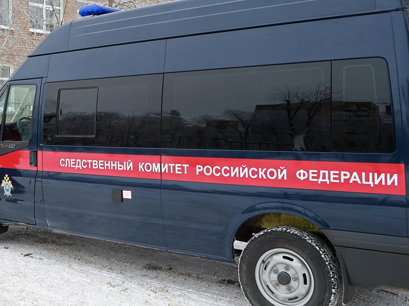 В Красноярском крае следователи ведут проверку в связи с публикацией в интернете видео, на котором юноша закидывает в духовку кошку