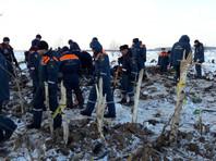 Всего в районе авиакатастрофы найдено 1489 фрагментов тел