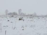 На борту разбившегося Ан-148 находились пассажиры из Оренбуржья, Москвы,  Петербурга